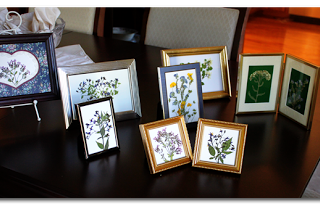 Take-A-Look Tuesday: Framed Flowers and LinkUp
