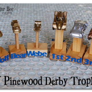 DIY Pinewood Derby Trophy Trophies