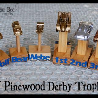 Diy+pinewood+derby+trophies