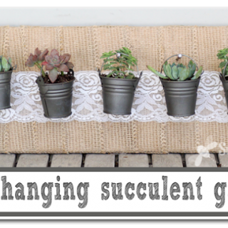 Mini+hanging+succulent+garden+copy
