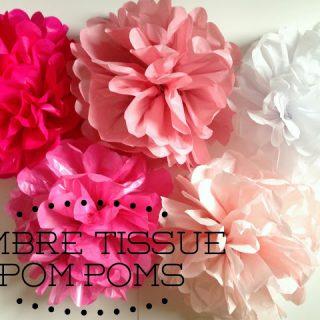 Ombre Tissue Pom-Poms