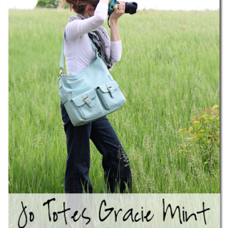 Jo+totes+gracie+mint+camera+bag+review