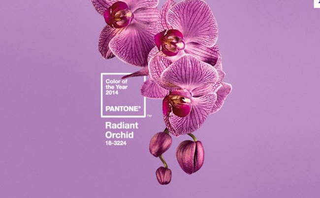 Radiant+orchid blog