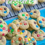 Mini Monster Cookies {Dessert Contributor}