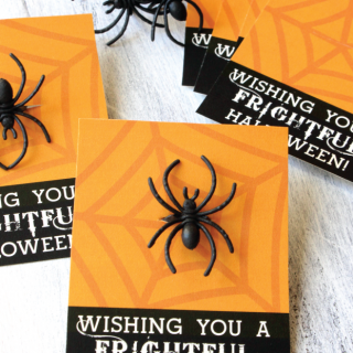 Spider ring cards