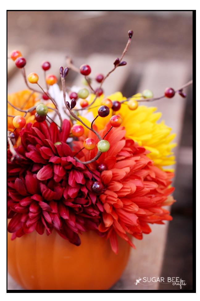 pumkpkin flowers