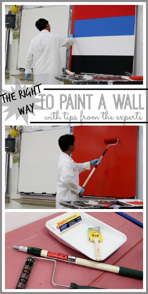 how to paint a wall tips from the experts sugar bee