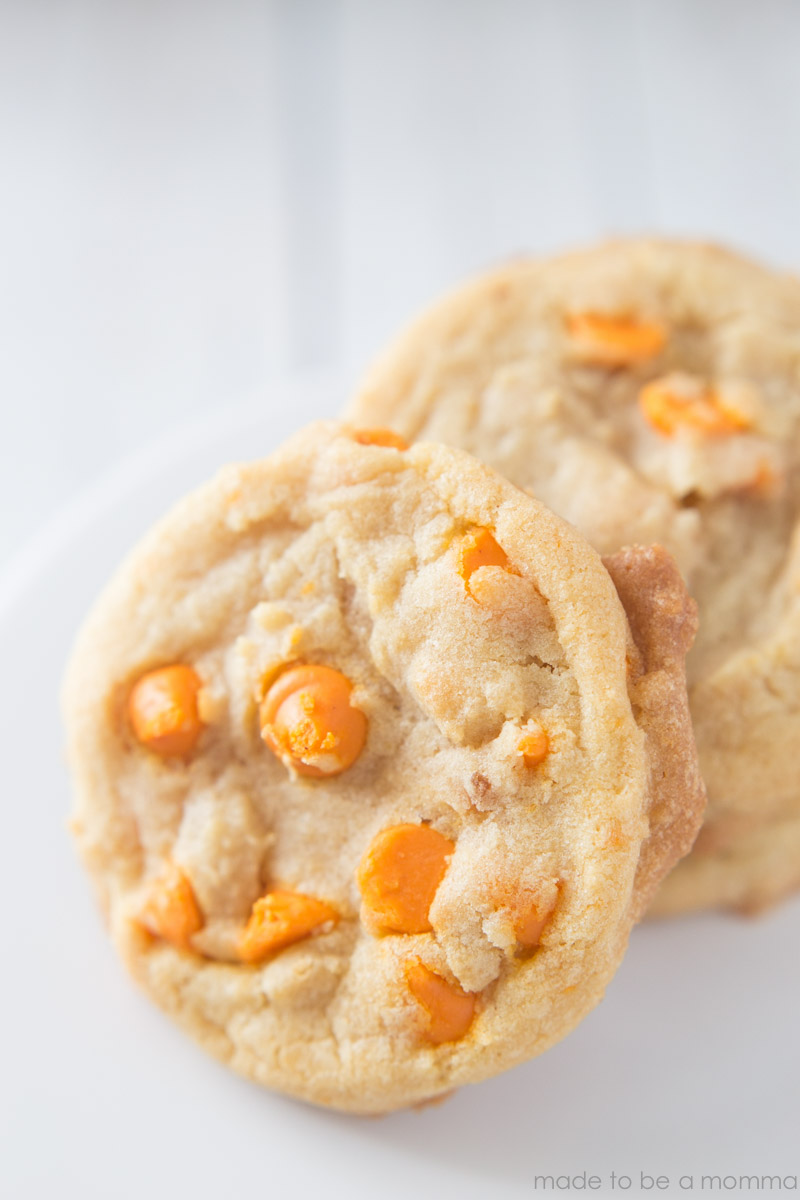 Pumpkin Spice Cookie-6