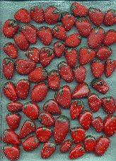 9lotsa_berries_