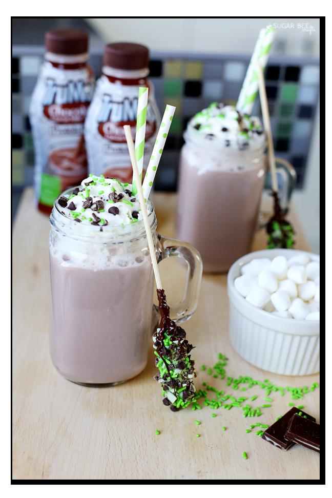 mint chocolate chip hot chocolate idea recipe