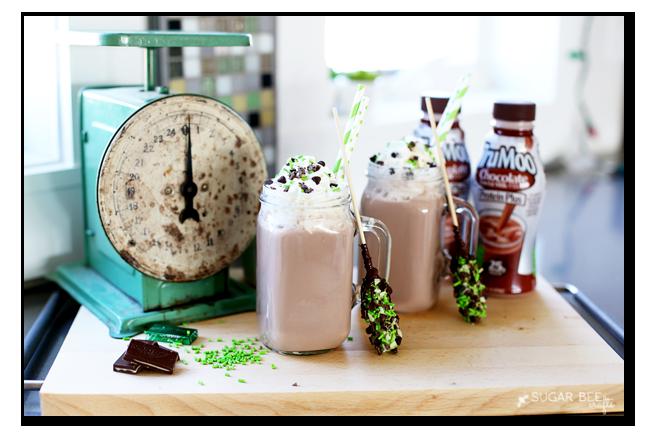 mint hot chocolate milk