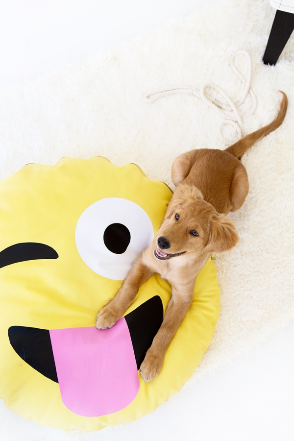 emoji-dog-bed-4-600x900