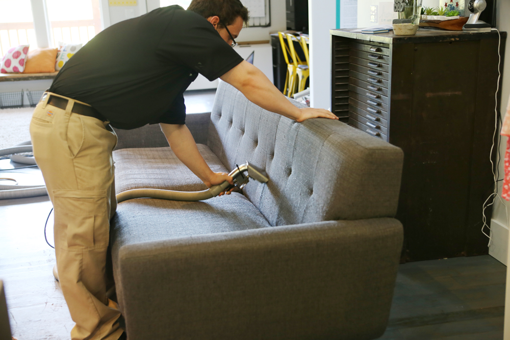 stanley steamer couch cleaning