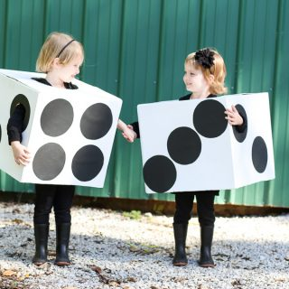 Box dice costume diy 11