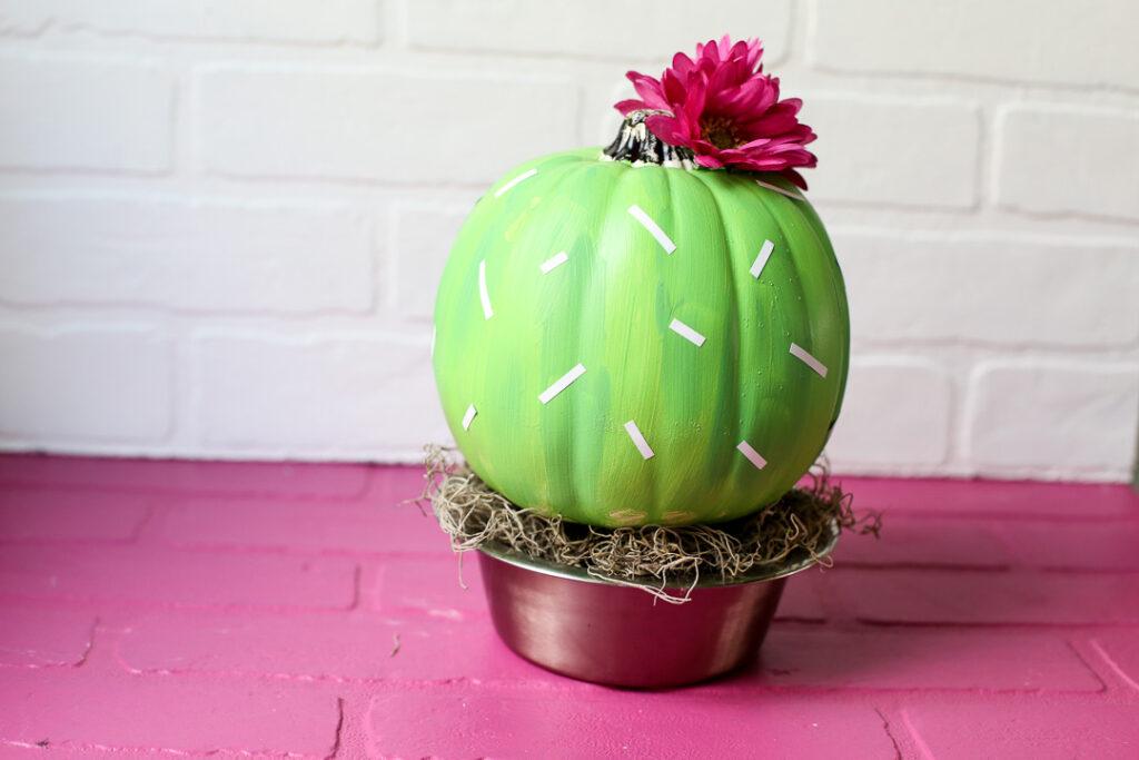 Cactus pumpkin 11