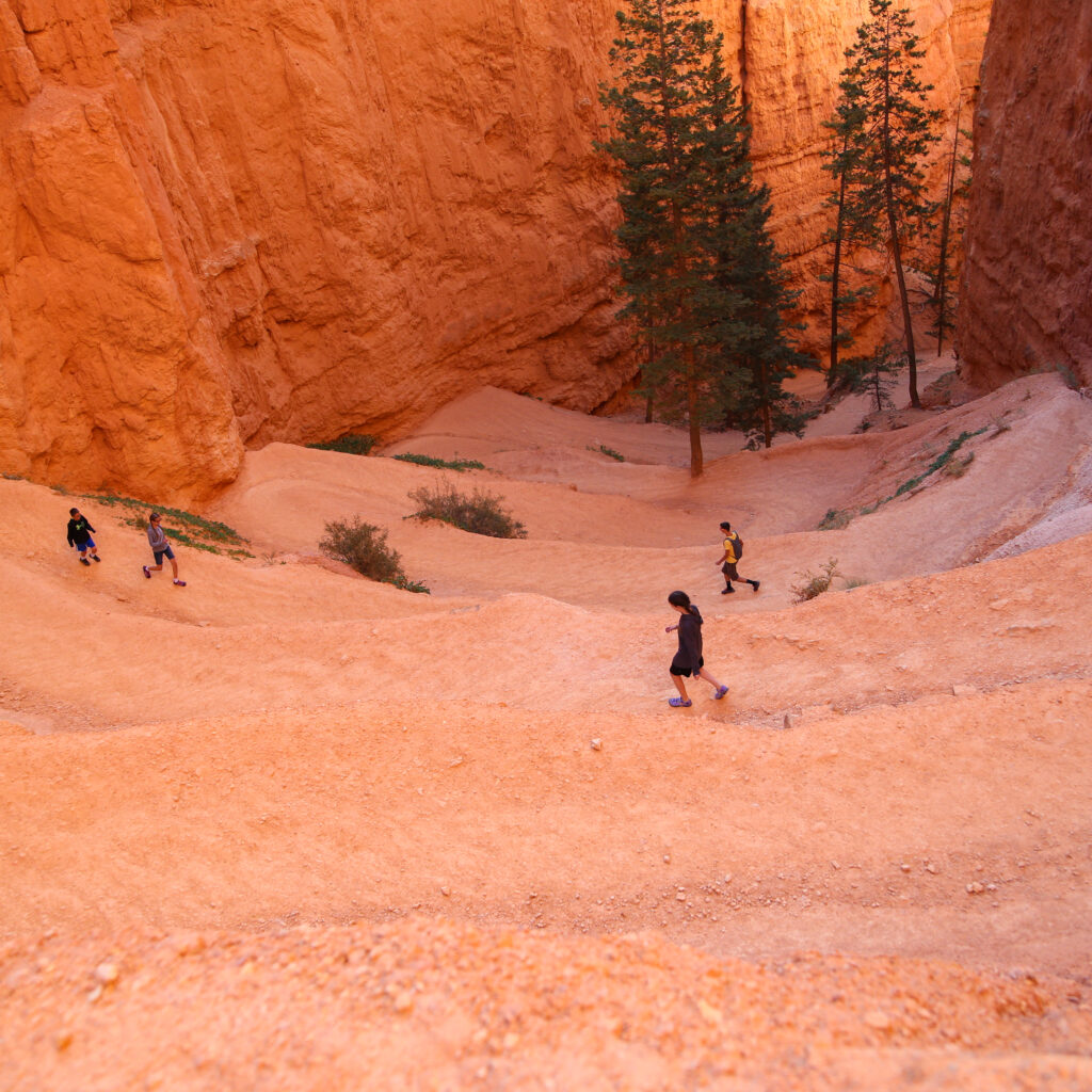 Bryce canyon national park hike 11