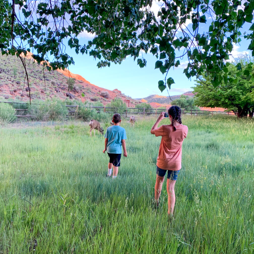 Capitol reef family hike 13